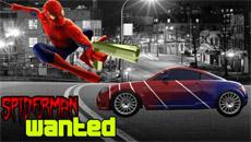 Человек паук: Погоня
